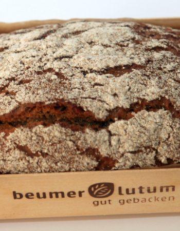 Beumer & Lutum